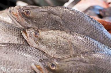 Huiles de poisson : un atout santé prouvé - La Montagne   Cool way of living and eating   Scoop.it