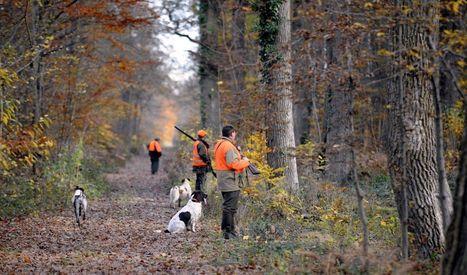 Auvergne-Rhône-Alpes : les trois millions de Wauquiez pour les chasseurs - le Parisien   Actualités écologie   Scoop.it