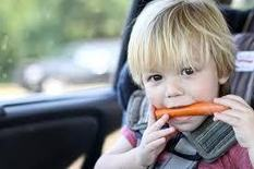Don't Eat Those Carrots! Emotional Intelligence and Ethics   Emotional Intelligence Development   Scoop.it