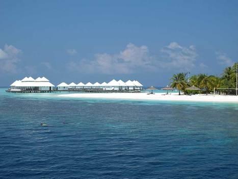 Top 6 Diving Resorts in Maldives | Scuba Diving | Scoop.it