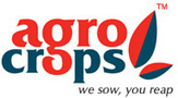 Peanuts Butter,Peanuts Butter Suppliers,Peanuts Butter Exporters | Agrocrops | Scoop.it