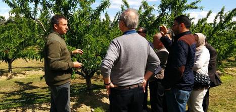 Rencontre Arbomed au Maroc | Fruits & légumes à l'international | Scoop.it
