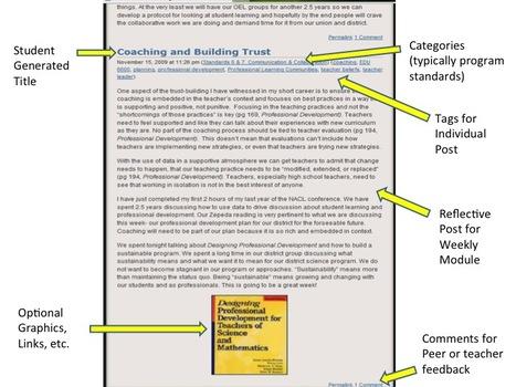 bPortfolios: Blogging for Reflective Practice   The Sloan Consortium   Transformative Digital Learning Design   Scoop.it