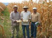 Reformaran Ley de Desarrollo Rural de Michoacán | Politicas Ciudadanas | Scoop.it