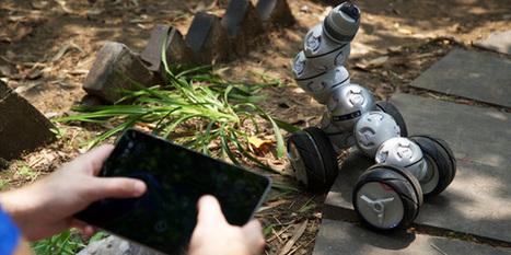 CellRobot, le robot dont la forme n'a de limites que votre imagination   Post-Sapiens, les êtres technologiques   Scoop.it