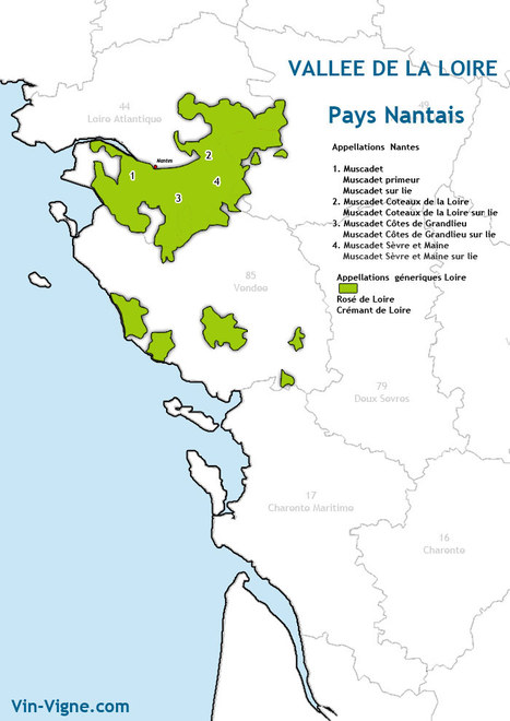 Vin Nantes | Vins de Loire | Scoop.it