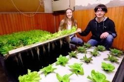 Agriculture urbaine : succès de la campagne de crowdfunding pour le Projet Osmose ! | Agriculture urbaine et rooftop | Scoop.it