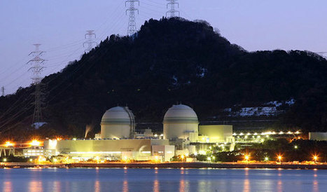 '#INSANE #PROTEST Massive Radiation Contamination Leaking Daily from 'closed' Reactors - Two more Japan nuclear reactors get safety clearance' - World Bulletin | News You Can Use - NO PINKSLIME | Scoop.it