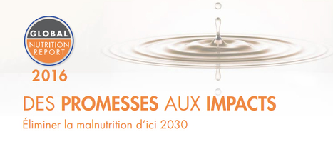 Rapport sur la nutrition mondiale 2016: Des promesses aux impacts: Éliminer la malnutrition d'ici 2030 :: IFPRI Publication | IFPRI Research | Scoop.it