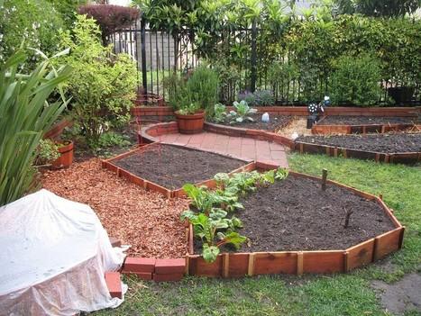 Organic Backyard Vegetable Garden Layout | Home Design | Scoop.it