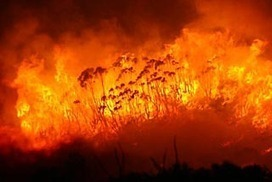Firefighting costs out of control | Daniel.F-GeogLog | Scoop.it
