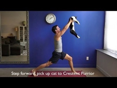 Doing Yoga With Cats. Human And Cat Were Made To Practice Yoga Together! Purrfection All The Way! | HotHotter | Scoop.it