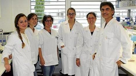 Investigadores de Valdecilla demuestran cómo ayudar a la piel a ... - El Diario Montanes | Anatomía y Fisiología, Cosmetología, Biología | Scoop.it