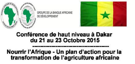 Agriculture : Conférence de haut niveau à Dakar | Questions de développement ... | Scoop.it