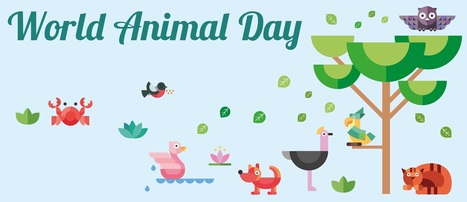 This World Animal Day Take A Pledge To Make A Difference In The Lives Of Your Pets | BestVetCare | Pet Care | Scoop.it
