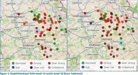Droogte begint boeren Brabant dwars te zitten | Bodem en Water | Scoop.it