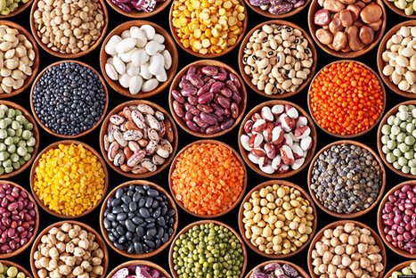 11 Healthy Foods Very High in Iron | Nutrition Today | Scoop.it