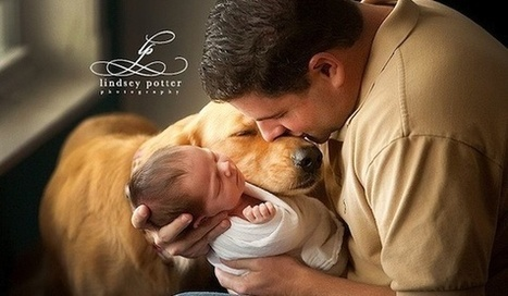 Photos capture tender moments between dogs and their young families | Ad Canes | Scoop.it