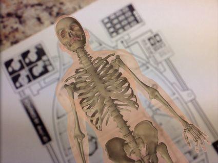 Anatomy 4D - An Augmented Reality Human Body App for IOS | Anatomy 4D | Scoop.it