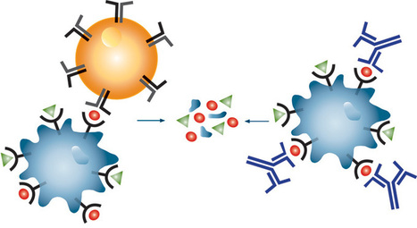 Role of plants in anticancer drug discovery | EUREKAMOMENTS IN ORGANIC CHEMISTRY | amcrasto.doc | Scoop.it