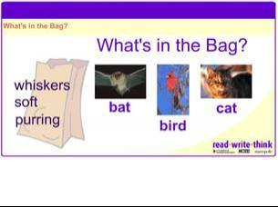 What's in the Bag? | Early Learners Online Literacy Activities | Scoop.it