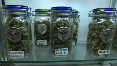 Marijuana debate: Veterans using pot to treat PTSD and war wounds   Marijuana Facts   Scoop.it