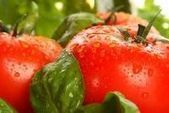 Agriculture : l'alternative du biocontrôle | Les colocs du jardin | Scoop.it