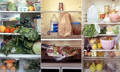 Cold comfort: What does the inside of your fridge say about you? | Ethnographic research | Scoop.it