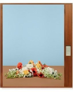Fleurs du mal: how artist Taryn Simon constructs political bouquets   Photoinfos   Scoop.it