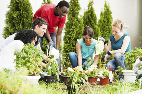 Agriculture Education Blooms in Urban, Rural High Schools - US News   THE SLAM GUY'S SLAM NEWS   Scoop.it