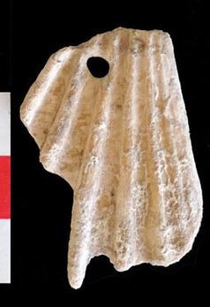 Chypre: découverte du plus ancien village d'agriculteurs de toutes les îles méditerranéennes - Communiqués et dossiers de presse - CNRS | Aux origines | Scoop.it