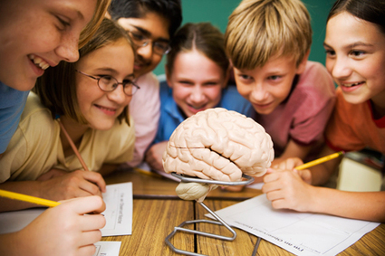 My Amygdala Ate My Homework! | On Learning & Education: What Parents Need to Know | Scoop.it