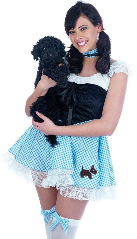 Ladies Wizard Of Oz Dorothy Fancy Dress Costume | Fancy Dress Ideas | Scoop.it