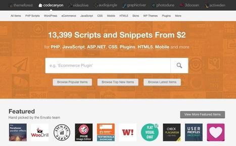 ThemeForest : Comment y trouver les meilleurs plugins et thèmes WordPress (et ne pas se faire avoir) | Worpress & co | Scoop.it