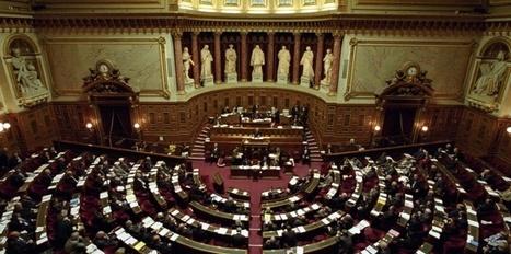 La loi de programmation militaire votée au Sénat | Dépenser Moins | Scoop.it