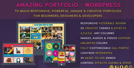 Amazing Portfolio – WordPress (Galleries)   Best Wordpress Plugins   Scoop.it