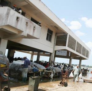 [Eng] La peur des poissons suspects du Japon envahit le marché de Dar | The Citizen (Tanzanie) | Japon : séisme, tsunami & conséquences | Scoop.it