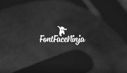 Font Face Ninja : une extension Chrome pour manipuler la typo d'un site | Monkey's cage | Scoop.it
