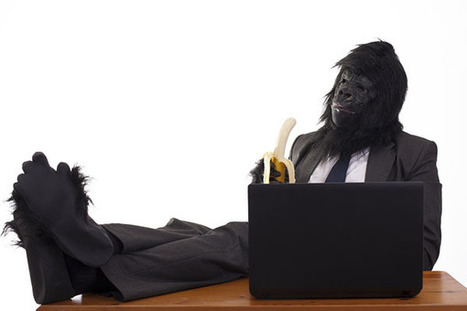 Inattentional Blindness: Why an Invisible Gorilla Is a Security Threat | Security | Scoop.it