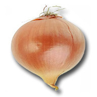 La Cebolla: Sus propiedades | Cebolla (Allium cepa) | Scoop.it