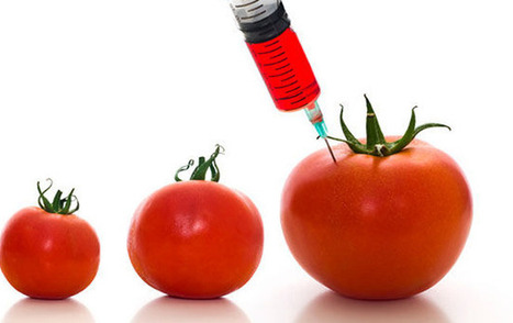 Largest Trade Deal in History Hits a Road Block Over GMOs   macroeconomics   Scoop.it