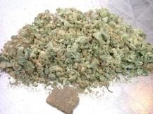 Buying Marijuana Online For Your Illness - Marijuanaseedsonline | Medical Marijuana | Scoop.it