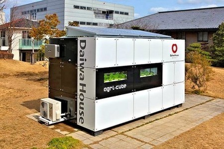 Agri-Cube grows mass quantities of vegetables in a one-car parking spot   Vertical Farm - Food Factory   Scoop.it