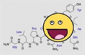 Does Nasal Oxytocin Enter The Brain? - Neuroskeptic | DiscoverMagazine.com | With My Right Brain | Scoop.it