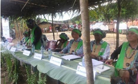 Cameroun : Commune rurale de BIPINDI, Défense de thèse en pleine forêt équatoriale. - ANOUMABO.COM | Science ouverte - Open science | Scoop.it