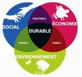 Guide pour l'élaboration du rapport développement durable des collectivités de plus de 50 000 habitants | Ressources politiques Guadeloupe | Scoop.it