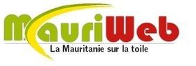 """Revue à mi-parcours de l'appel global pour la Mauritanie 2013 ...   Revue de presse """"Afrique""""   Scoop.it"""