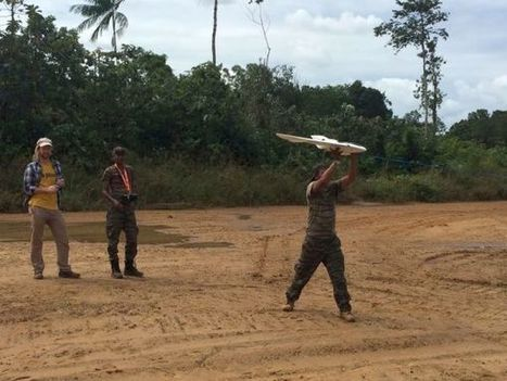 How Conservation Drones Can Save Rainforests | Drones | Scoop.it