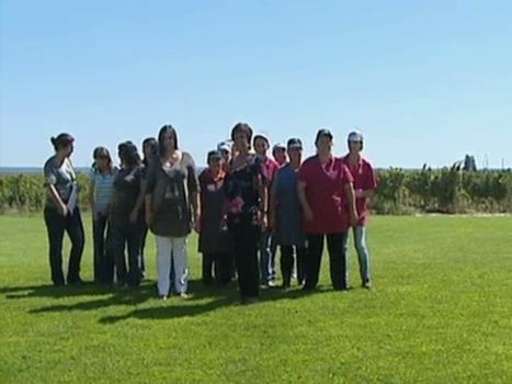 «Estrada Nacional» na Península de Setúbal - Casa Ermelinda Freitas | Wine Pulse | Scoop.it