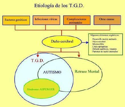 T.G.D. Característiques | Trastrons del desenvolupament (Educació Infantil) | Scoop.it